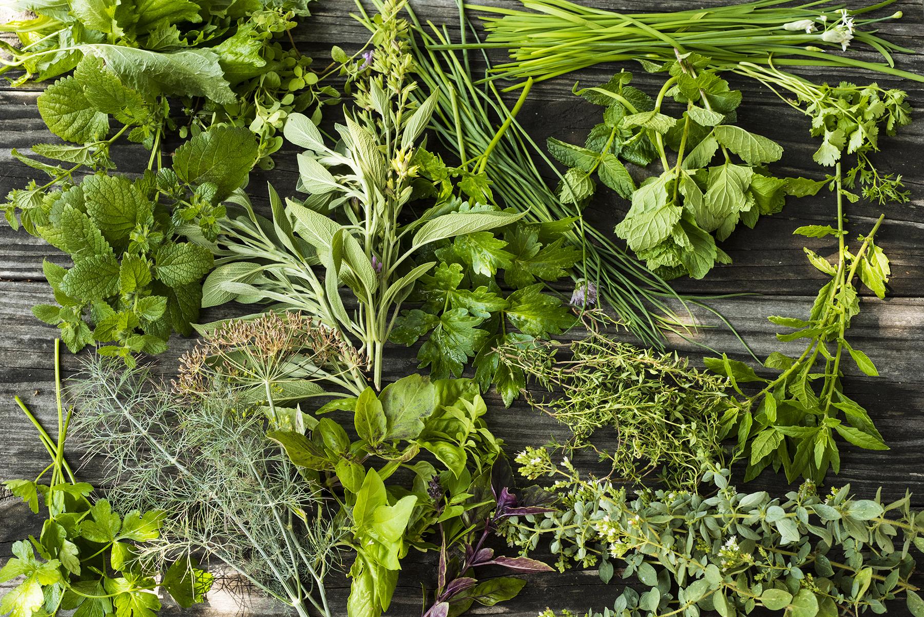 Herb Assortment