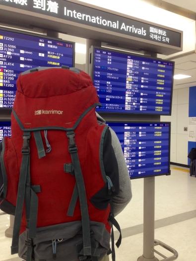 Travel backpack.jpg