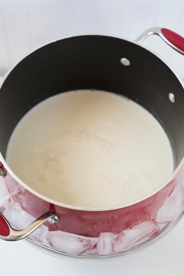 Yoghurt 04 sml