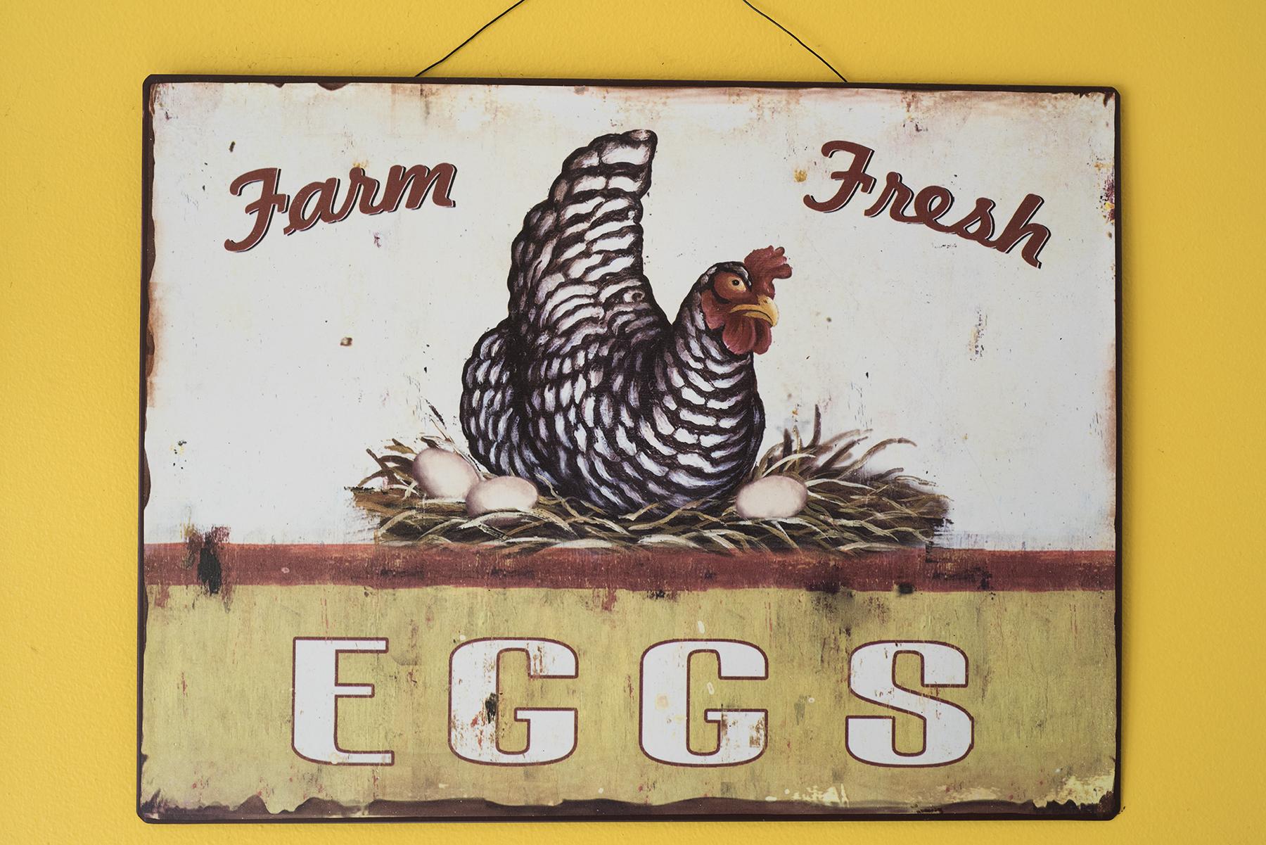 Egg Sign 01 sml