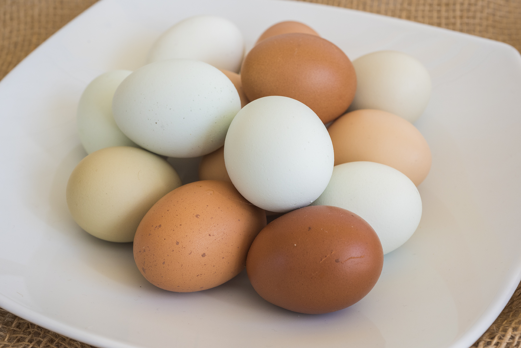 Eggs Bowl 01 sml