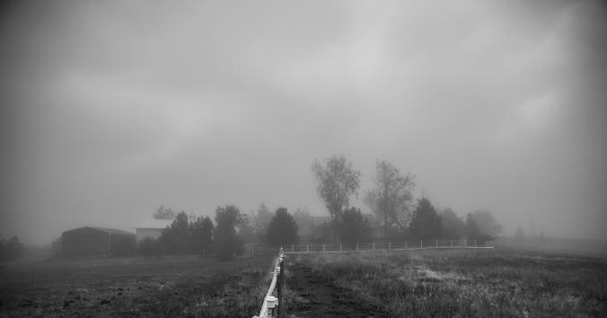 QF Fog 01 sml