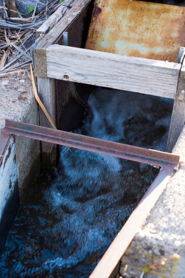 QF Irrigation 13 sml