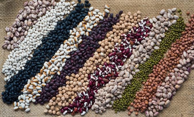 bean stripes 01 sml