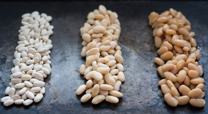 beans 01 sml
