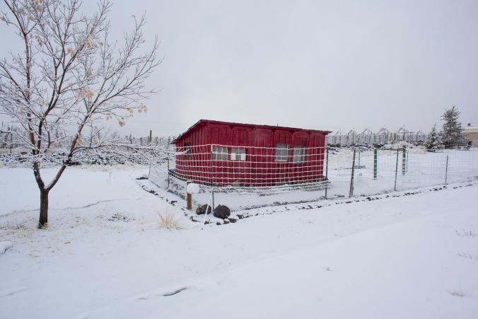 Chicken House 11 sml