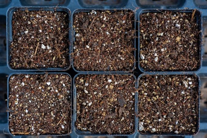 Compost 06 sml