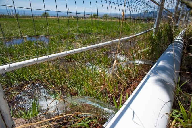 Irrigation 02 sml
