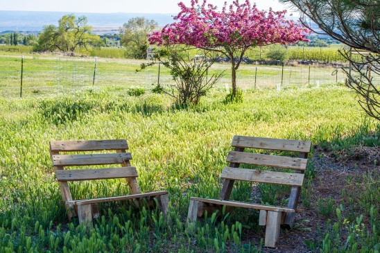 Pallet Chairs 01 sml