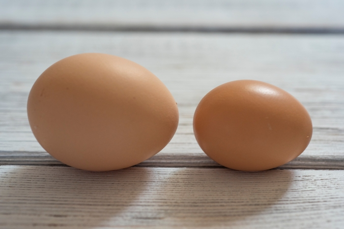 Eggs 01 sml