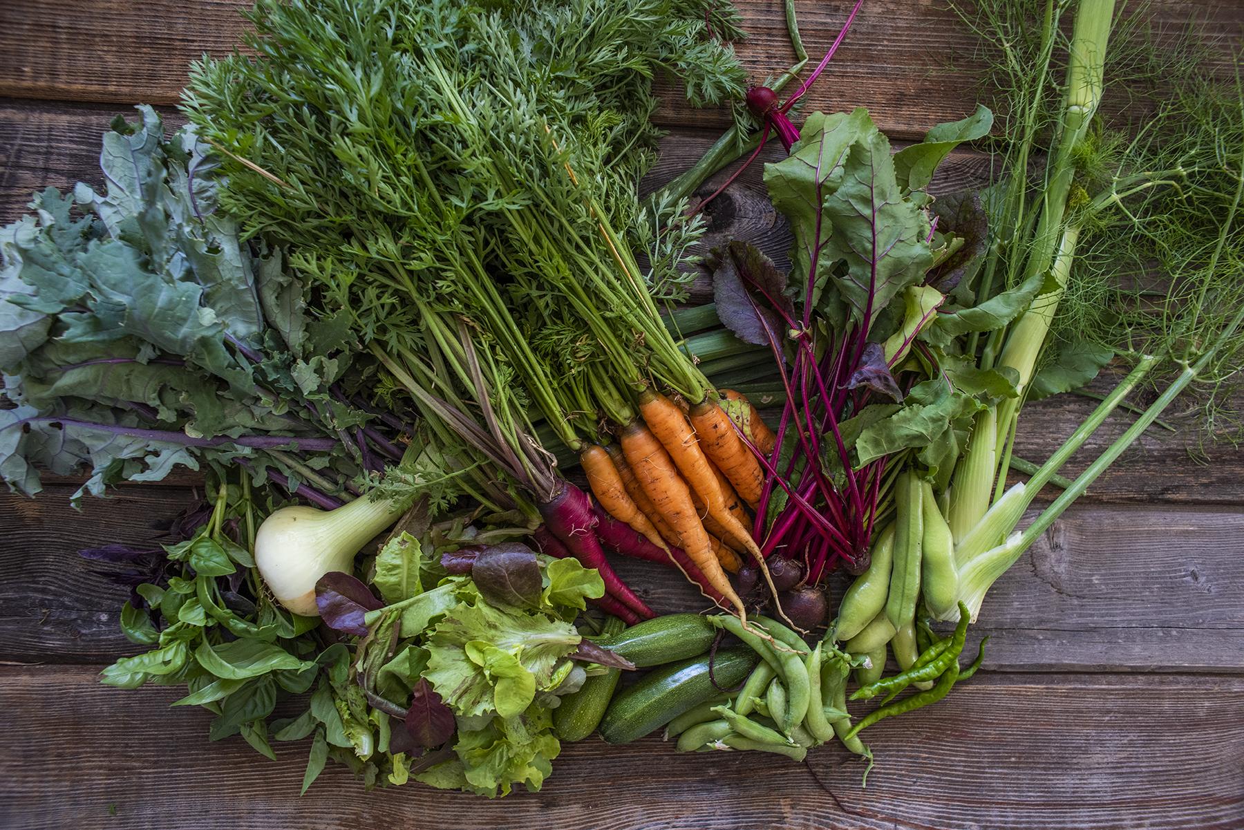 Vegetables 01 sml